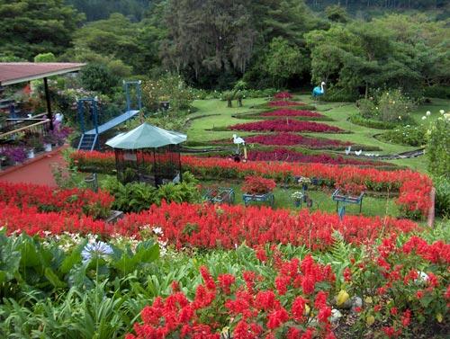 Boquete Garden Tour